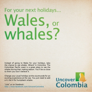 Wales or whales? one of the posters used in our communication campaign
