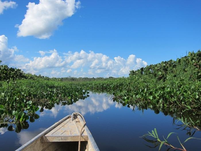 Laguna Negra, Guaviare - Colombia. Image copyright Ariel Dombroski