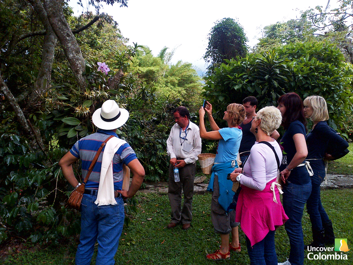 Hacienda Coloma -  Getting ready to pick coffee beans