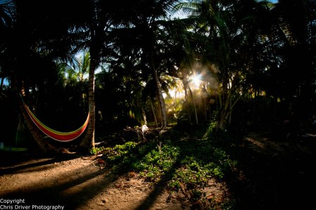 Tayrona Natural Park - Copyright Chris Driver Photography