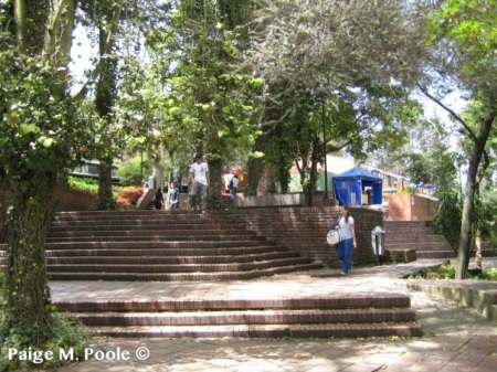 Stairs at la Pontificia Universidad Javeriana  leading to the Political Science Faculty