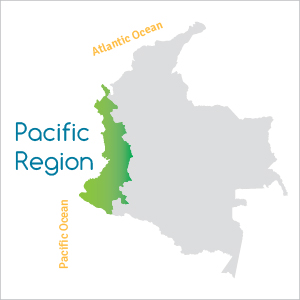 The Pacific Region