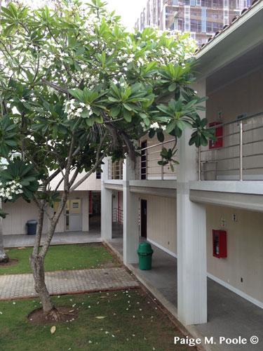 Some classrooms around the Instituto de Idiomas
