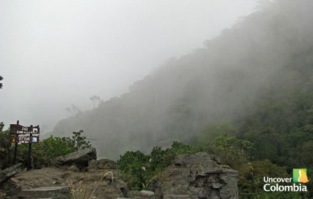 View of the Cloud Forest in Chicaque Natural Park