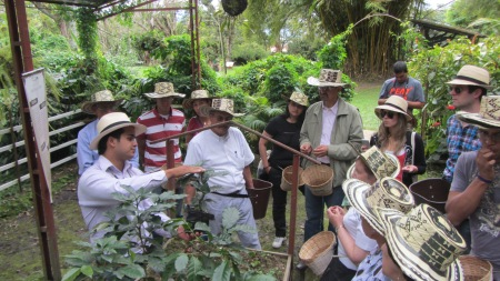 Learning about the coffee-making process at a coffee farm near Bogota