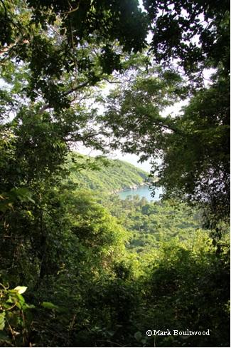 Tayrona Park - Colombia