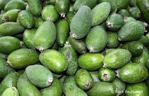 Feijoa has a taste that is unique. It is zesty and sharp but at the same time, delicious.