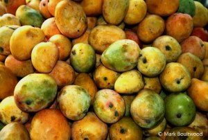 Mango azucar is a very popular fruit in Colombia. These mini mangos cost 20 pence each